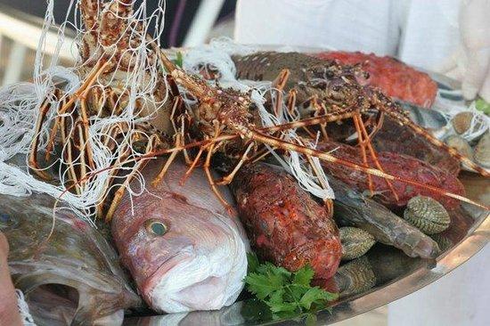 Antonijo: Fresh fish