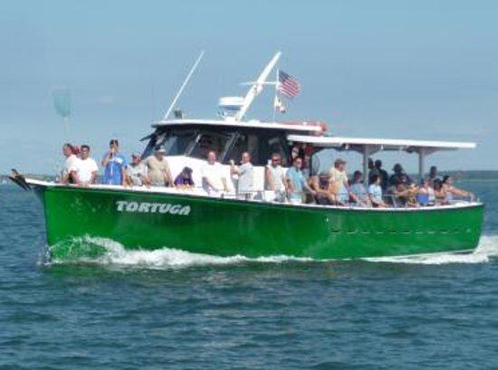 Fishing Tortuga Ocean City Md 2017 Reviews Top Tips
