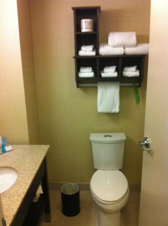 Hampton Inn by Hilton Sydney: Bathroom 1