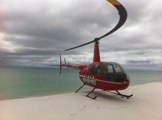 Timberview Helicopters Photo
