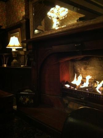 Princes Gate Hotel: fireplace - lobby