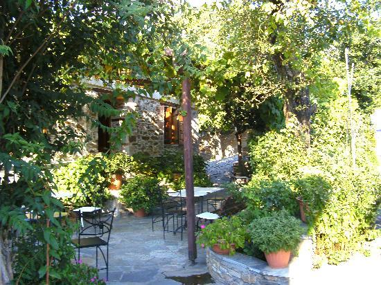 Country Hotel Triantafillies: Außenbereich