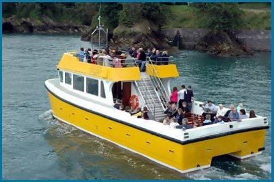 Ilfracombe Princess: The vessel.