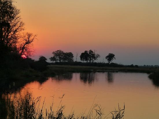 Wilderness Safaris King's Pool Camp: Beautiful sunset