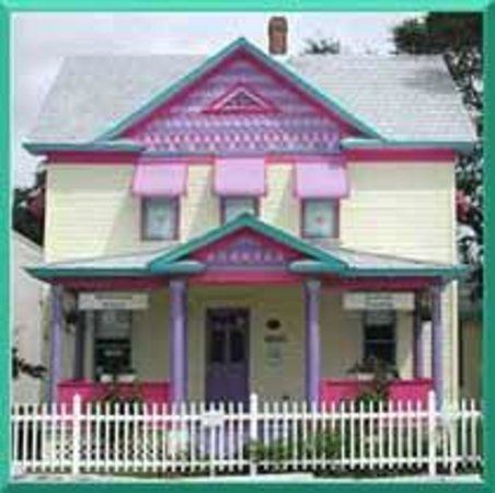 Painted Lady Gift Gallery Art Classes