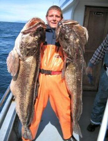 Alaska Coastal Marine Tours