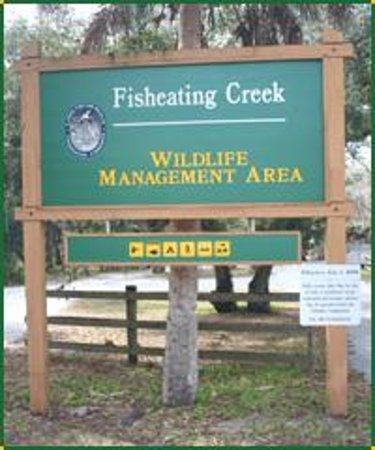 Fisheating creek outpost palmdale fl top tips before for Fish creek florida