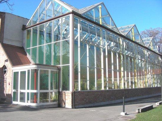 Museo dell'Orto Botanico