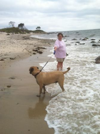 Harkness Memorial State Park: Rocco from pa loves the surf at harkness state park