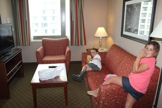 Homewood Suites by Hilton Chicago-Downtown: Living room