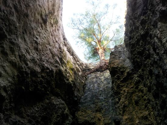 Blue Cave Castle: Looking up from caves