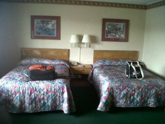 Rodeway Inn & Suites : Bed areas were spacious. Mattresses need replacing.
