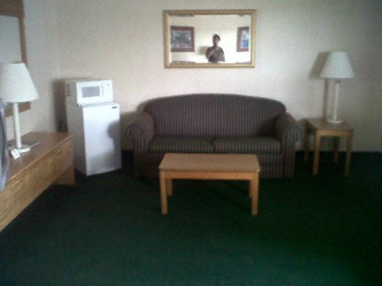 Rodeway Inn & Suites : Pull out coach. Microwave and fridge were quite useful.