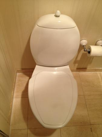 Mendocino Hotel and Garden Suites: Toilet was weird with a plastic seat