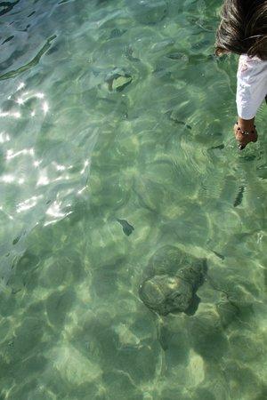 Lagoa Azul: Just beautiful