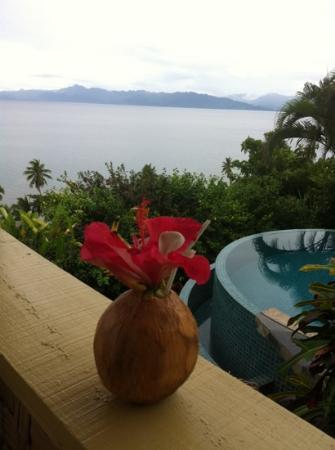 Fiji Beach Shacks : The best holiday