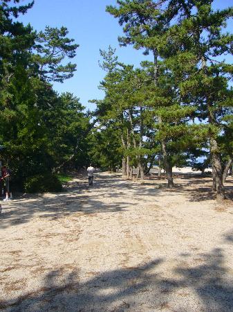 Миядзу, Япония: 白砂青松