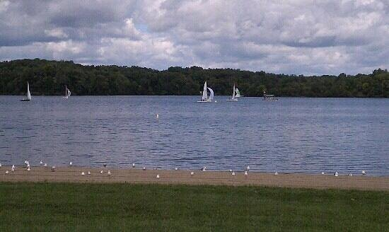 Cowan Lake State Park: Sailboats on Cowan Lake
