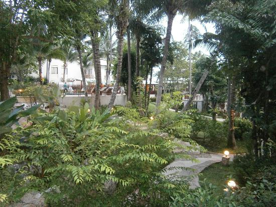 Horizon Karon Beach Resort & Spa: Lush & very well maintained vegetation around the grounds