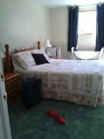 Newcastle Country Inn: A cozy single room