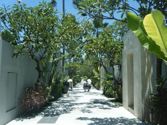 ‪‪The Seminyak Suite Private Villa‬: walk way too the villas