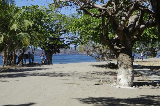 Playa Conchal, Costa Rica: Strand Conchal