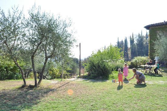 Agriturismo La Casavecchia : Een klein stukje van de enorme tuin