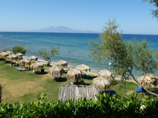 Arkadia Hotel : A cozy lawn beach 100 m from the hotel