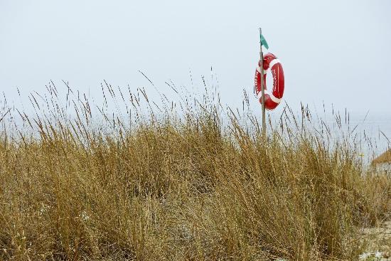 5 Quinas: vista verso la spiaggia