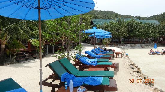 Haad Yao Bayview Resort & Spa: Les transats sur la plage
