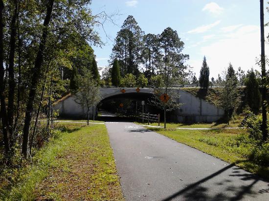 Jacksonville-Baldwin Rail Trail: Pritchard Road Bridge