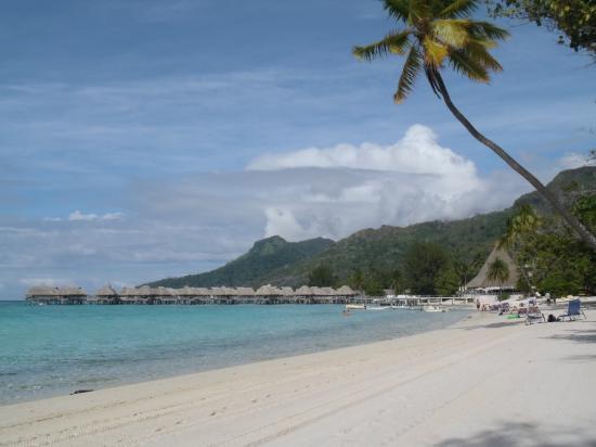 Sofitel Moorea Ia Ora Beach Resort: Sofitel Moorea - sa belle plage