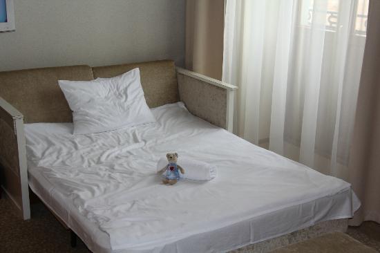 Hotel Herman Centrum Szkoleniowo-Konferencyjne: Foldout Couch