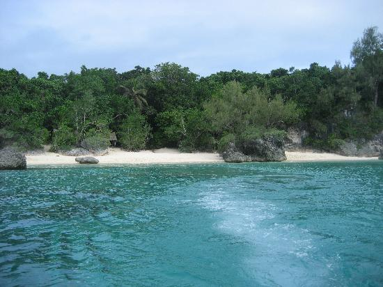 Tranquility Island And Turtle Sanctuary Tour
