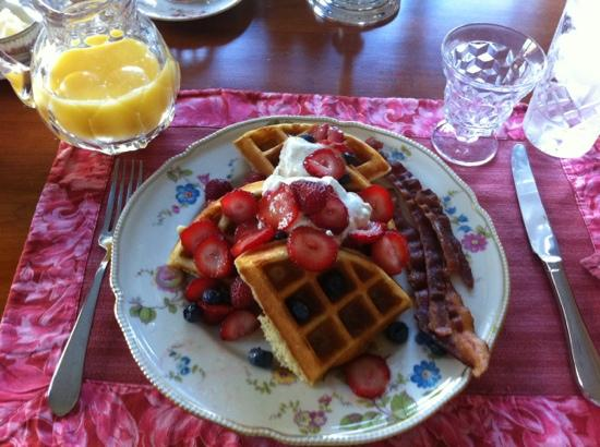 Willey's Farm Bed & Breakfast: Wonderful waffle breakfast!
