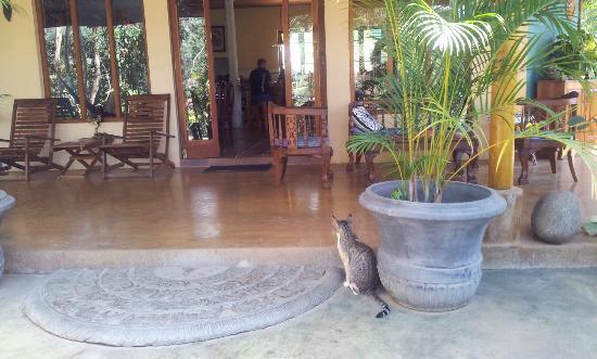 Waterfalls Homestay : Eingang ins Wohnzimmer