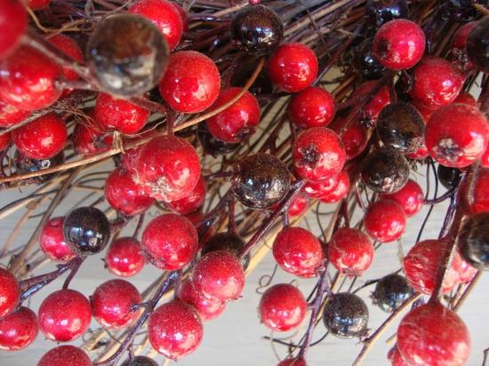 On Cranberry Pond Bed and Breakfast: Cape Cod Cranberries