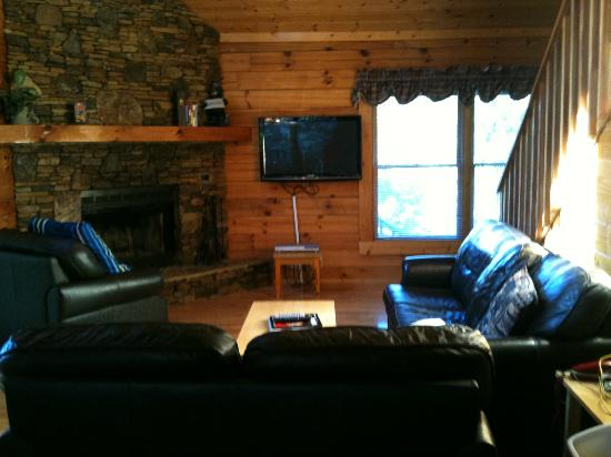 Little Valley Mountain Resort: Living area