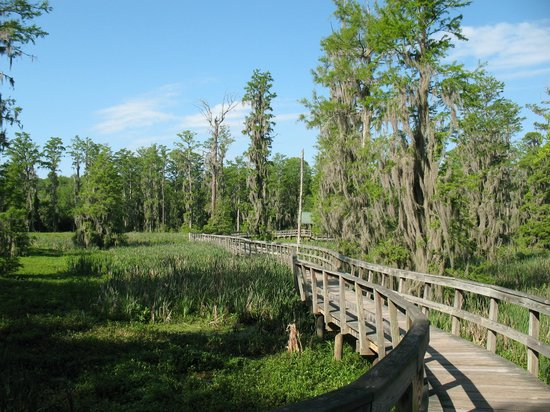 Phinizy Swamp Nature Park