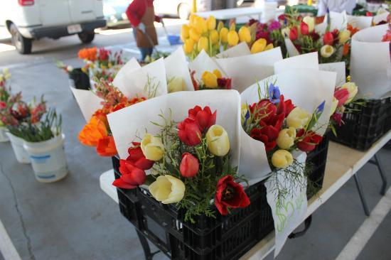 State Farmers Market: Fresh Flowers