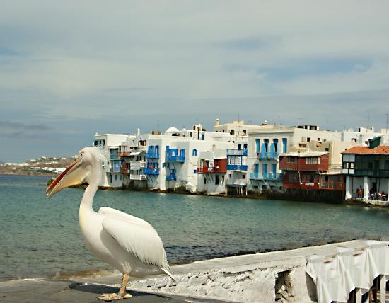 Klein-Venedig: el dueño de la isla
