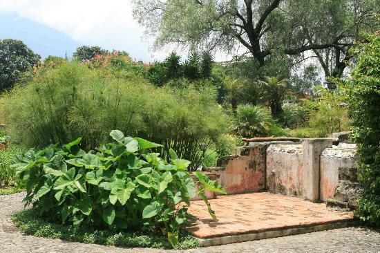 Detalles de Quinta de las Flores
