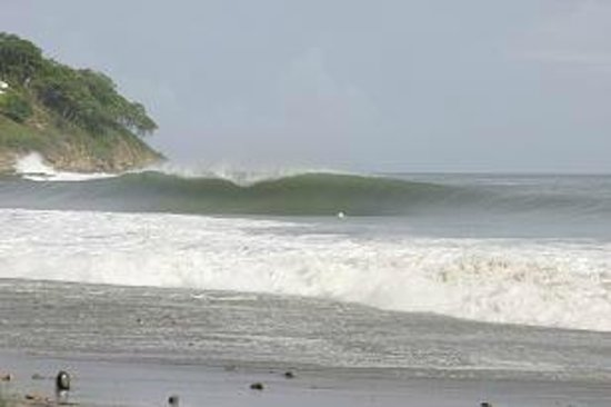 Las Plumerias Lodge and Surf: Somewhere !!!