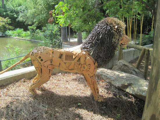 The Bear Sitting Pretty Picture Of Riverbanks Zoo And Botanical Garden Columbia Tripadvisor