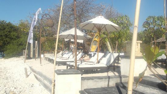 Ko-Ko-Mo Resort: kokomo sunbeds