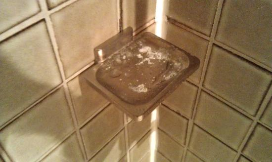 Executive Inn and Suites: soap scum