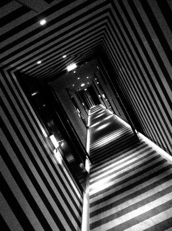 Le Royal Monceau-Raffles Paris: Corridor
