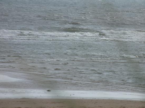 Balmedie Beach : The cold north sea