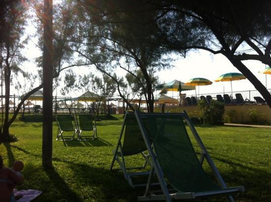 Area verde e piscina foto di bagno teresa viareggio tripadvisor - Bagno teresa viareggio ...