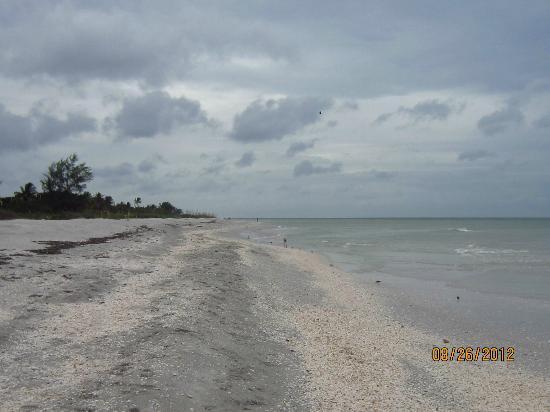 Mitchell's Sandcastles: Beautiful walking beach